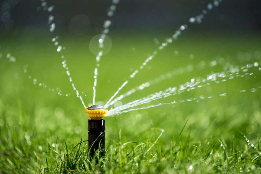 Why Use Sprinklers in Orlando?
