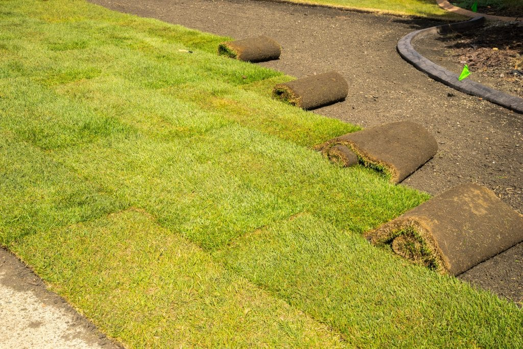 orlando sod installation Can Raise Your Property Value
