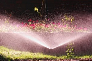 Understanding Orlando Irrigation