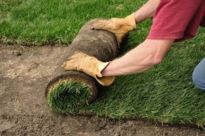 Apopka Sod Delivery and Installation