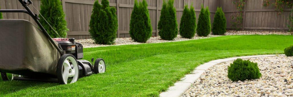 Florida lawn care